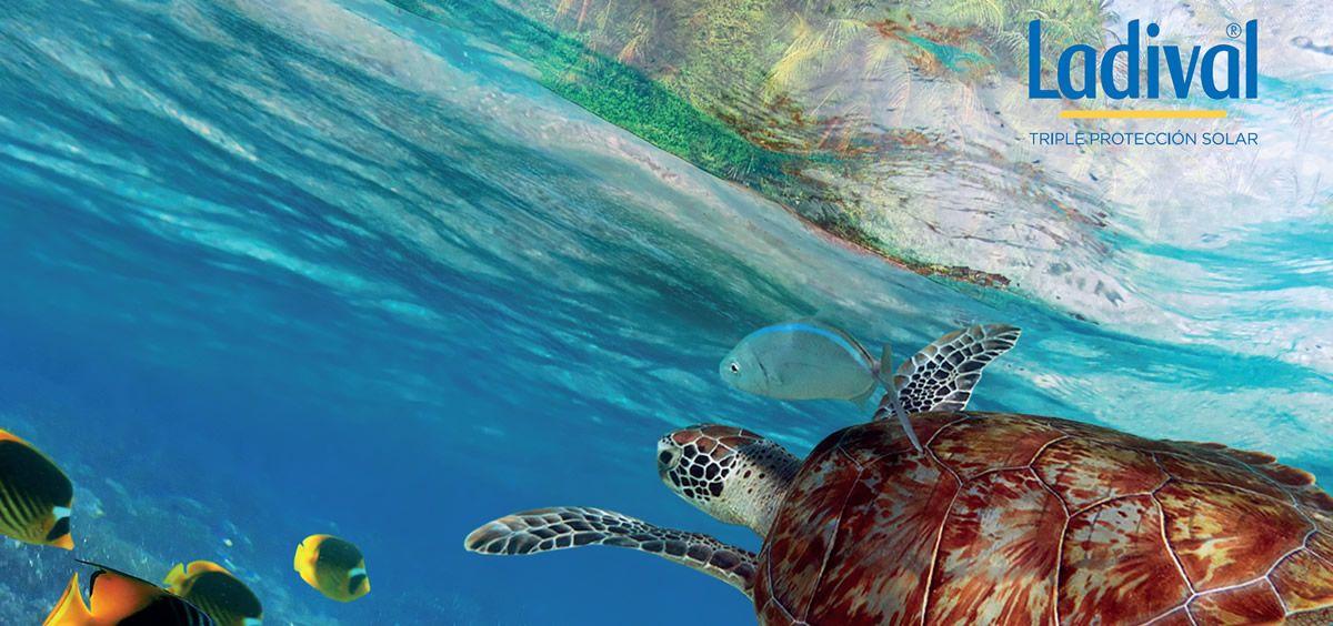 Ladival impulsa el compromiso Water Conscience para proteger actívamente los océanos