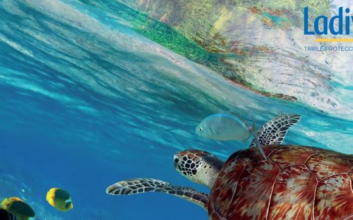 Ladival (Stada) impulsa el compromiso Water Conscience para proteger los océanos
