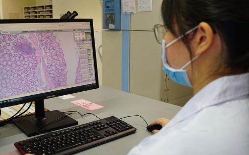 Philips y el Hospital General de Singapur establecerán un centro de excelencia de patología digital