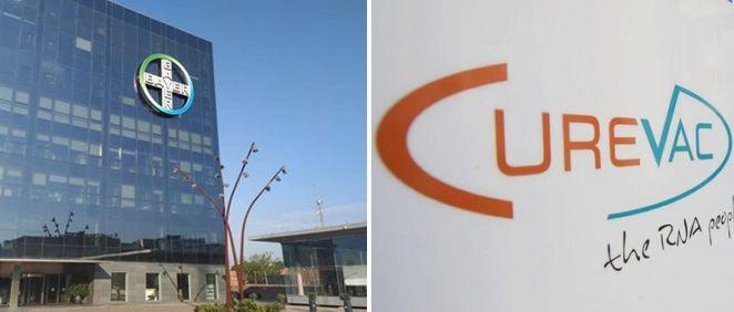 Bayer pone fin a su contrato con CureVac tras el fracaso de su vacuna Covid