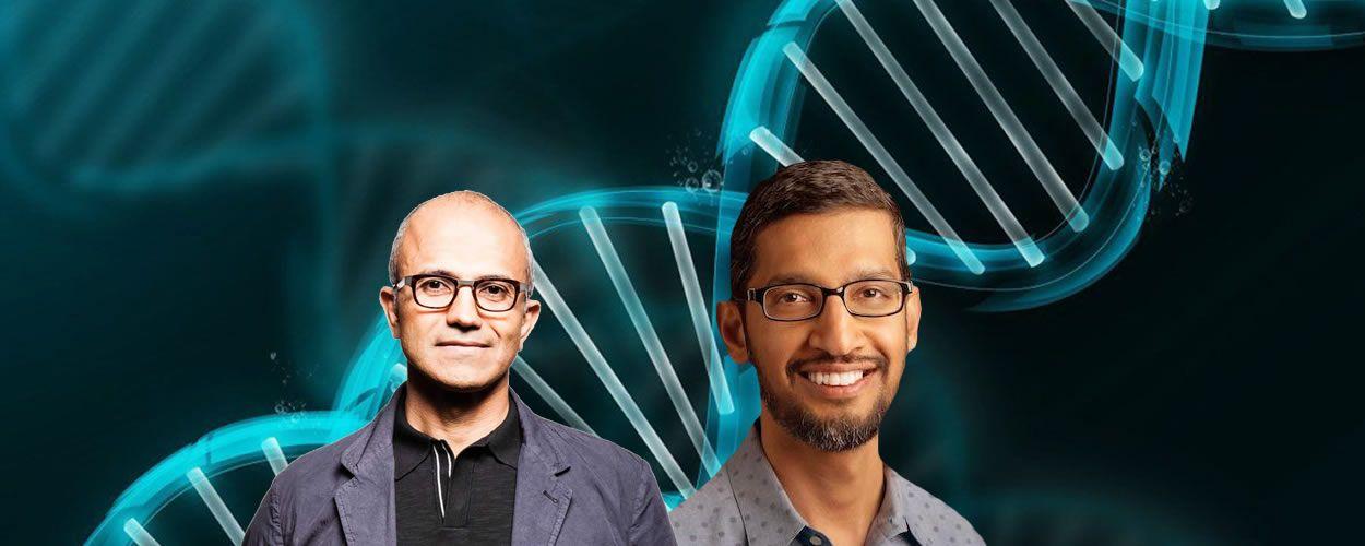 Satya Nadella, CEO de Microsoft, junto a Sundar Pichai, CEO de Google.