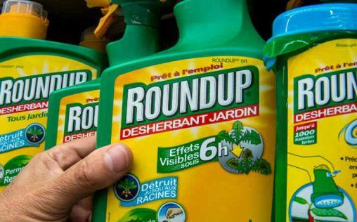 Monsanto recurre el veredicto sobre la millonaria indemnización al afectado por sus herbicidas