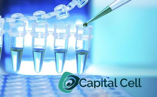 ¿Por qué hay que invertir en biotecnología española?