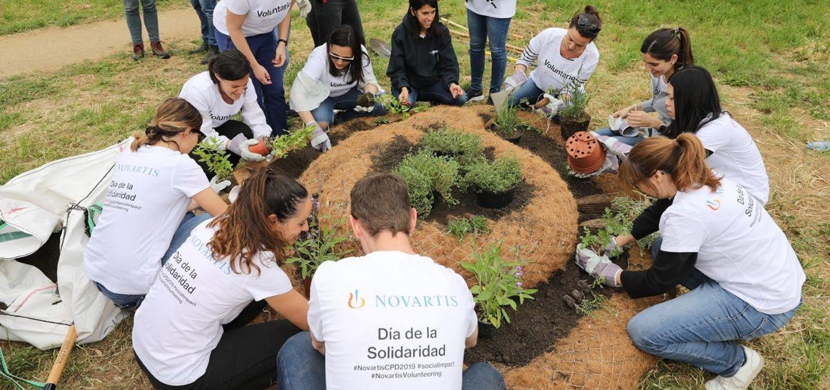 Novartis celebra la 23ª edición de su Día de la Solidaridad