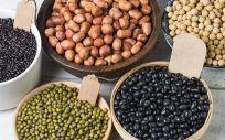 Las legumbres tienen un alto valor nutricional de la dieta mediterránea (Foto. Freepik)