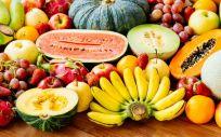 El sistema digestivo descompone los alimentos en nutrientes y energía que el cuerpo puede usar (Foto. Freepik)