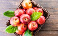 La manzana es una gran fuente de fibra (Foto. Freepik)
