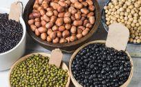 Las legumbres tienen muchos beneficios para la salud (Foto. Freepik)