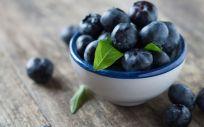 Los arándanos son una fruta muy rica (Foto. Estetic)