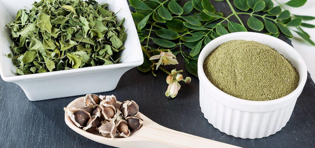 Moringa (Foto. Estetic)