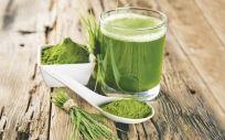 Hierba de trigo, uno de los alimentos con propiedades detox para depurar el cuerpo.