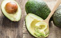 Aguacate, entre los alimentos más eficaces en la quema de grasas