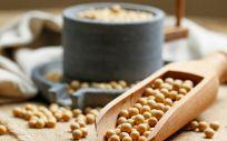 Beneficios y riesgos de consumir soja