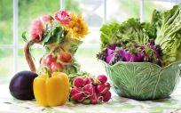 La Dieta Sostenible, la última moda en alimentación saludable