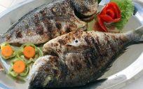 El aceite de pescado, un gran aliado para mejorar la memoria.
