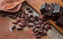 El cacao tiene propiedades antioxidantes