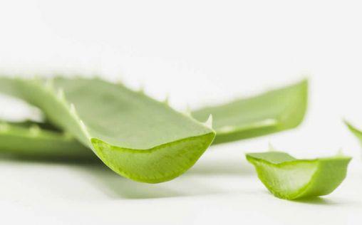Herbalife lanza una bebida que concentra un 97% de aloe vera