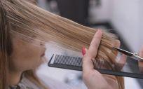 El cabello nos acompaña, por lo general, a lo largo de toda nuestra vida