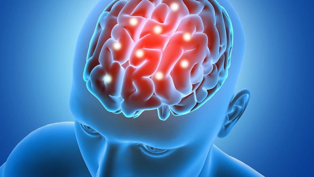 Organoides cerebrales para estudiar enfermedades neurológicas (Foto de Freepik)