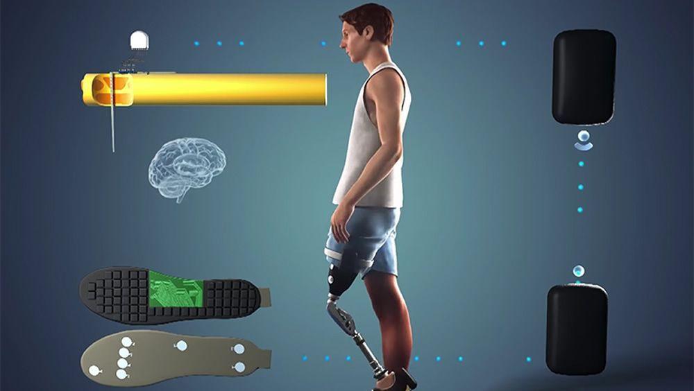 Esquema de cómo funciona la pierna protésica (Foto: ETH Zúrich)