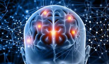 Una plataforma de Inteligencia Artificial podría ayudar a curar enfermedades cerebrales (Foto. Freepik)