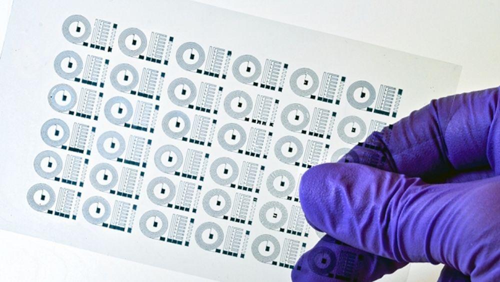 Desarrollan un implante cerebral impreso en 3D (Foto. Instituto de Tecnología de Massachusetts)