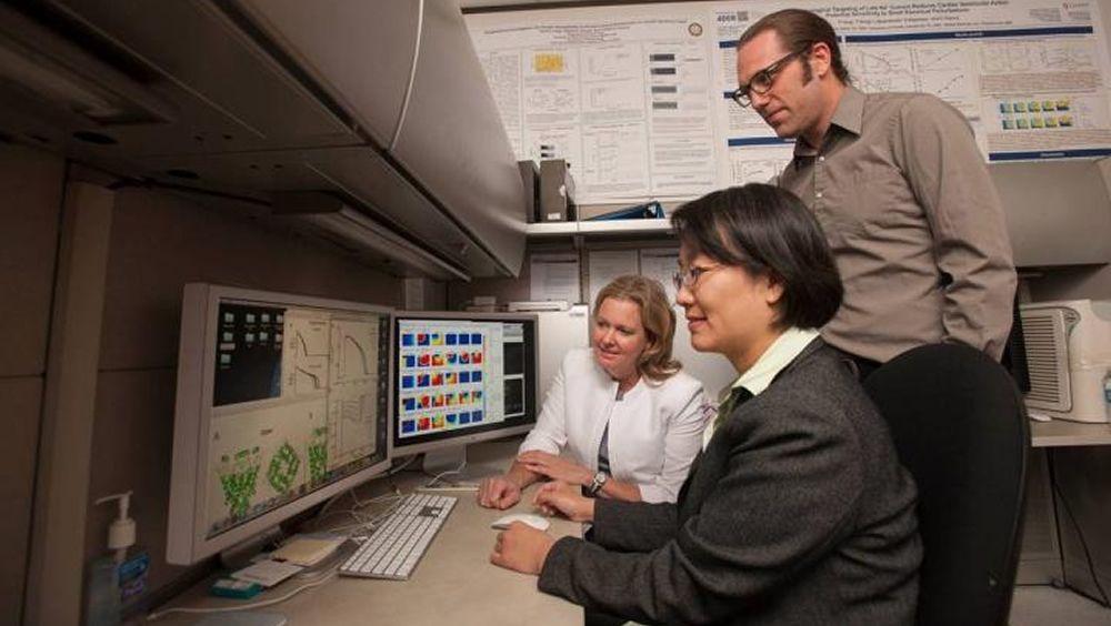 Un modelo de computadora predice cómo las drogas afectan el ritmo cardíaco (Foto. UC Davis Health)