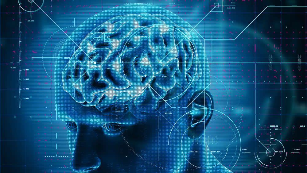 Cerebro (Foto. Freepik)