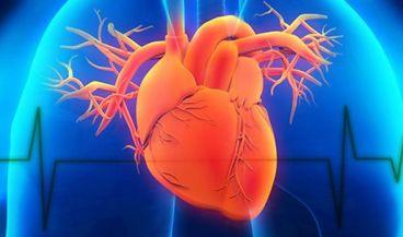 Crean modelos exactos de válvulas cardíacas aórticas para procedimientos mínimamente invasivos