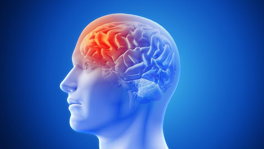Desarrollan una malla endovascular para tratar el vasoespasmo cerebral (Foto. Freepik)