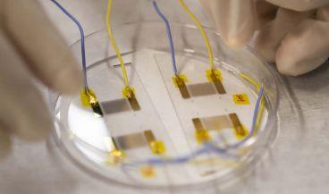 Un dispositivo diagnostica rápidamente la anemia de células falciformes (Foto. Universidad de Colorado)