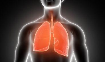Salud pulmonar (Foto. Freepik)