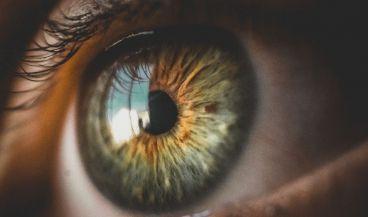 Los implantes de retina pueden dar visión artificial a las personas ciegas (Foto. Pixabay)