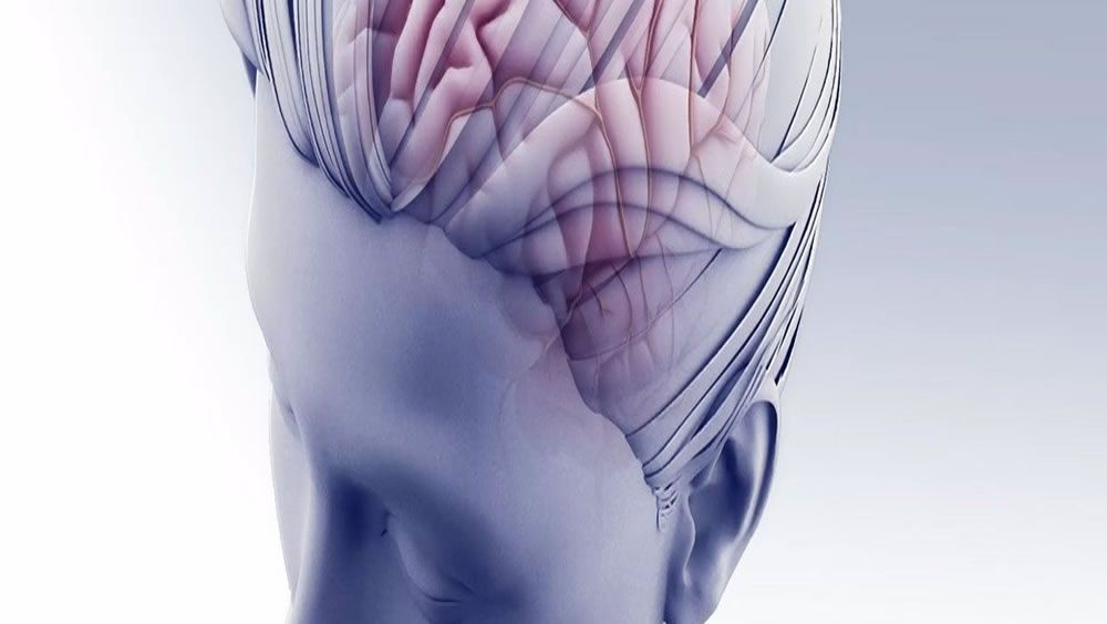 Sistema de administración de fármacos de nanopartículas para trastornos cerebrales