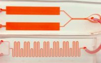 Proteinator (Foto. Universidad de Stanford)