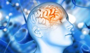 Las imágenes en 3D y la IA se combinan para diagnosticar los grados de Parkinson (Foto. Freepik)