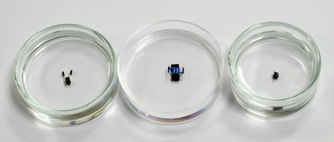 Robots magnéticos en miniatura. (Foto NTU Singapore)