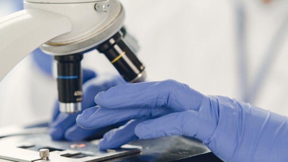 Científico analizando muestras en un microscopio