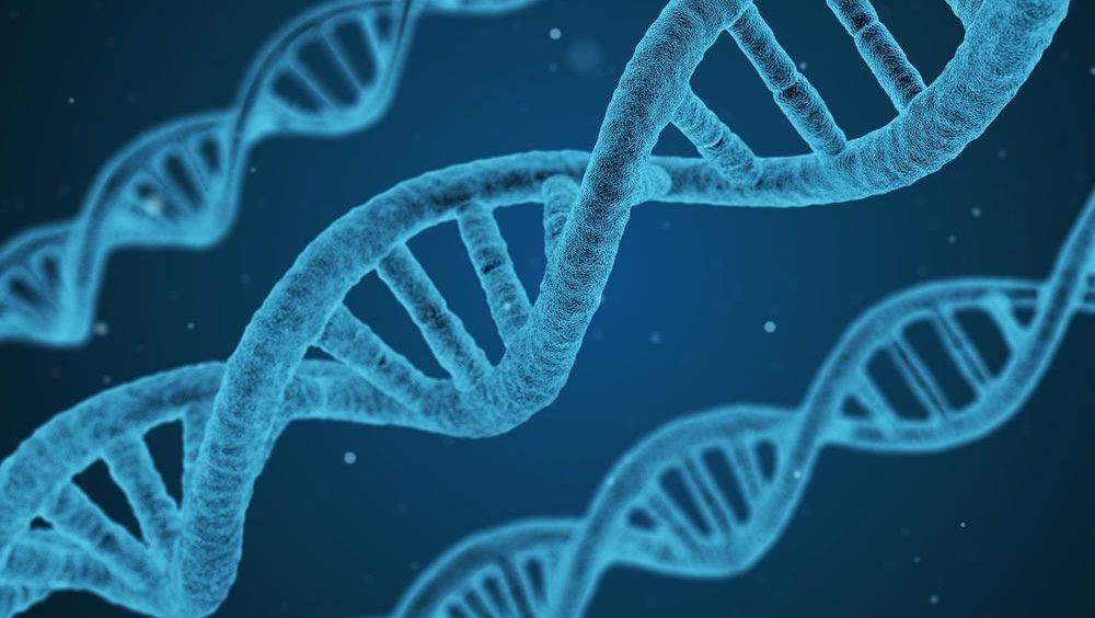 La tecnología genómica revoluciona el diagnóstico prenatal con el Array CGH