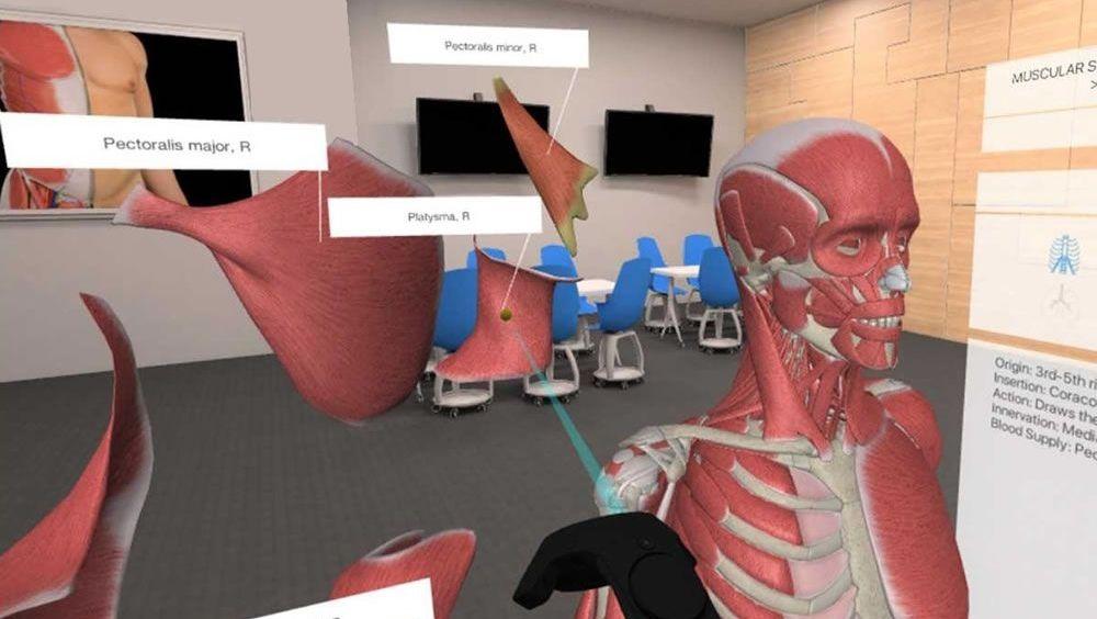 La realidad virtual, al servicio de la Anatomía