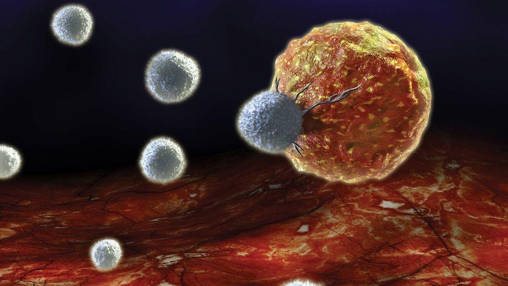 Células T: destruir al cáncer reprogramando células inmunes
