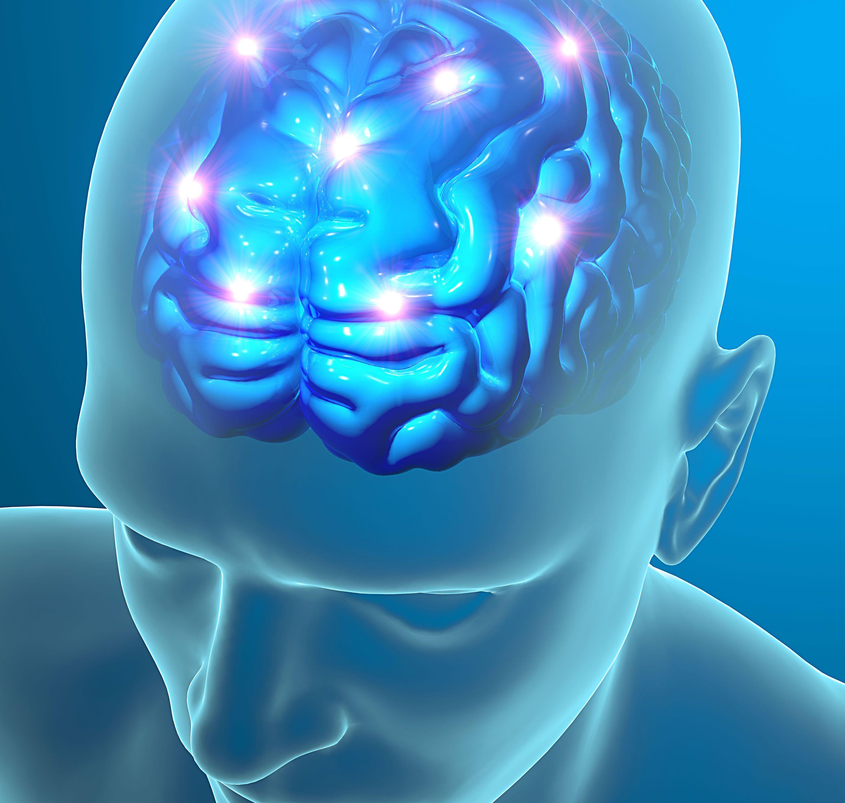 Resultado de imagen para funcion cerebral