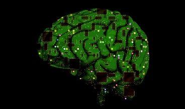 La reducción de la temperatura en regiones específicas del cerebro mejoraría las crisis epilépticas