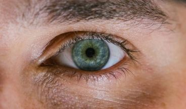 Crean un iris artificial que reacciona ante la luz como un ojo humano