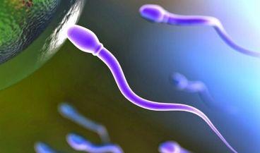 Gadgets y wearables que persiguen el control y la mejora de la fertilidad