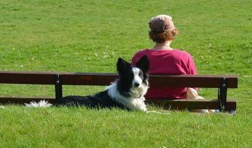 Perro junto a su dueña, en el parque.