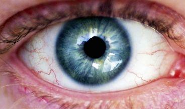 Google quiere emplear la inteligencia artificial para la detección precoz de enfermedades oculares
