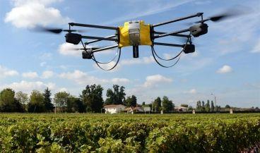 Drones y otras tecnologías para combatir las alergias primaverales