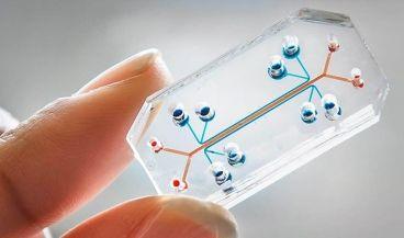 La tecnología que desarrolla Orchid está basada en el uso de plataformas microfluídicas