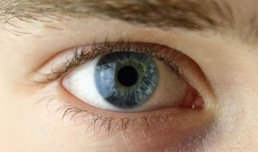 Primer plano de un ojo humano